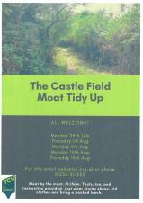 Why not Volunteer with TCV- Castle Fields?