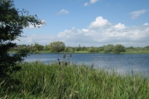 New plan unveiled to promote the Nene Valley